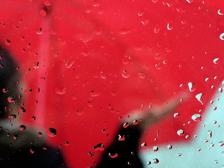 Red Umbrella - Our 3 Day Rain Promise
