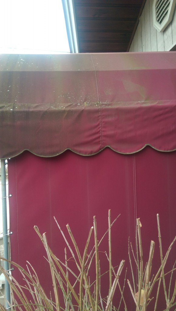 Before Commercial Awning Cleaning Oakwood